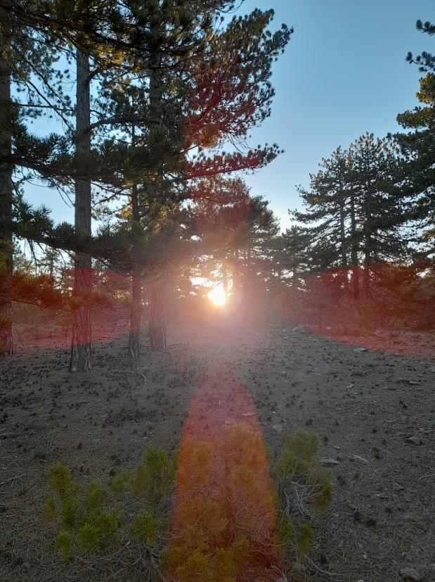 Summer Solstice Camping Adventure2021
